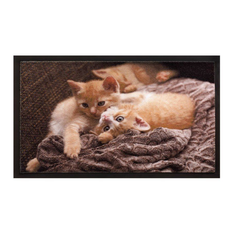 Vnitřní vstupní čistící rohož Image, Cats, FLOMA - délka 40 cm a šířka 60 cm FLOMAT
