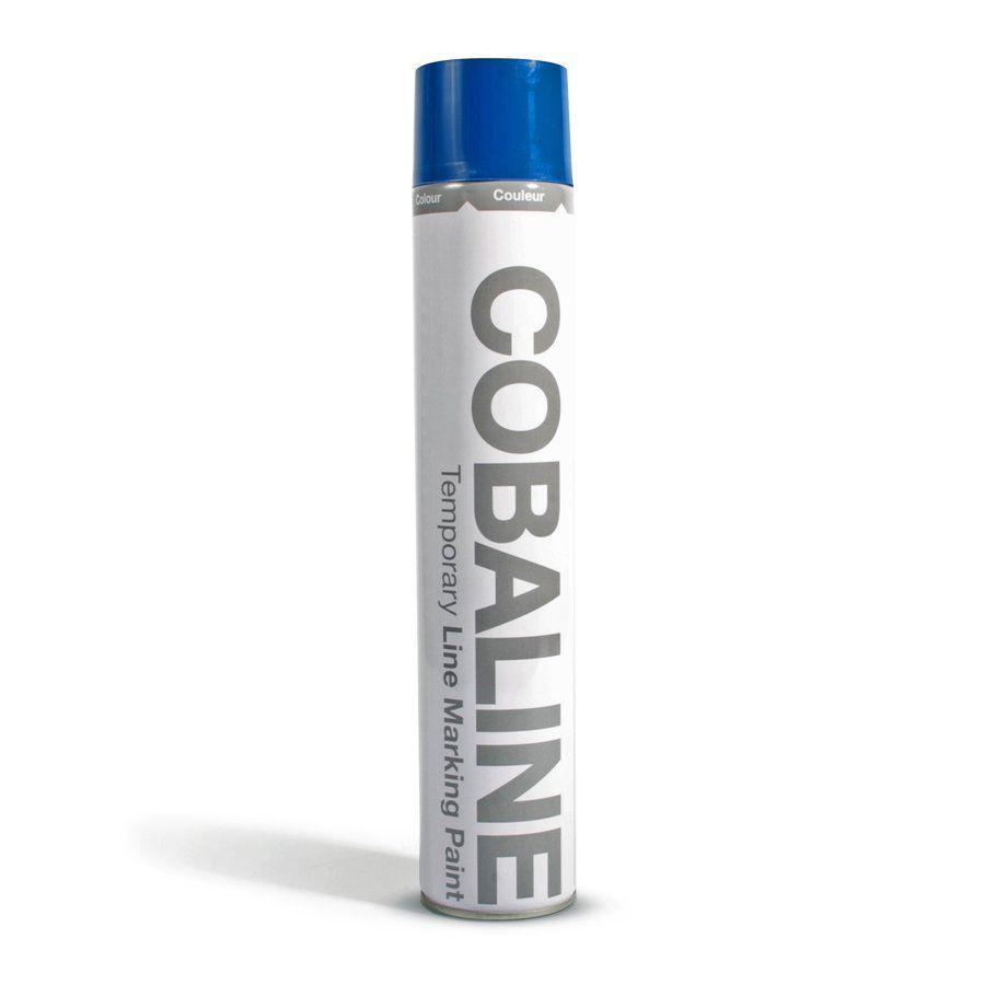 Modrá aerosolová rychleschnoucí krátkodobá barva - objem 750 ml FLOMAT